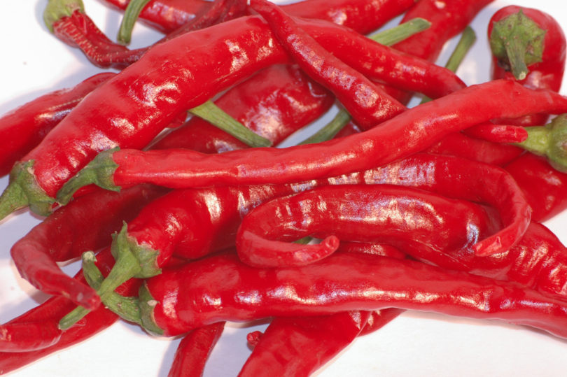 Die Chilisorte Cayenne Long Slim gehört zur Art Capsicum annuum
