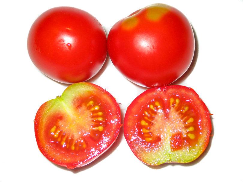 Reife Früchte der Tomatensorte