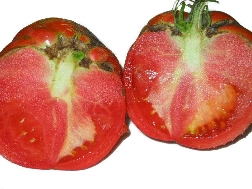 Die Tomaten dieser Sorte aus Neapel sind groß, saftig und sehr schmackhaft