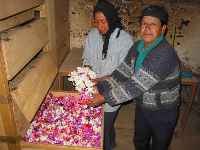 Die Rezeptur enthält viele getrocknete Blüten