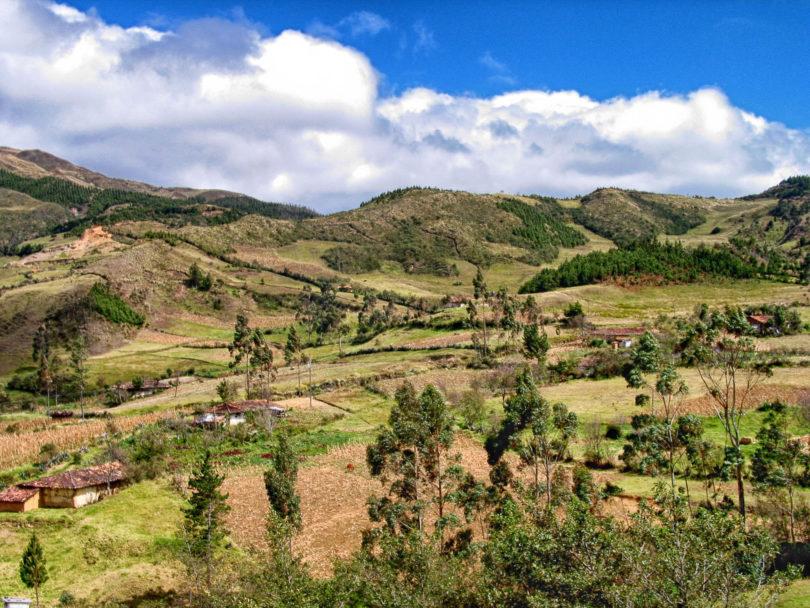 Horchata lojana wird in den Anden auf über 2500 Metern Höhe angebaut