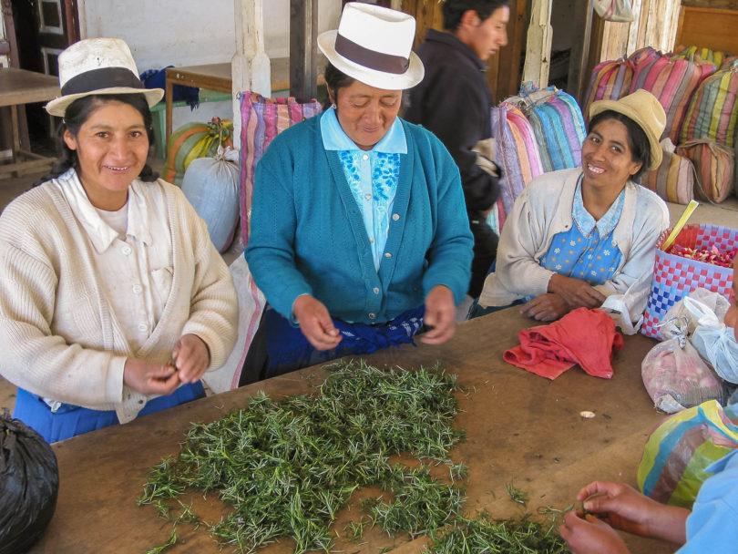 Herstellung von Horchata lojana in den Anden von Ecuador
