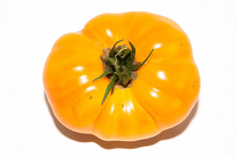 Die Früchte  der Tomate Hughs sind gerippt, groß und besitzen viele Fruchtkammern