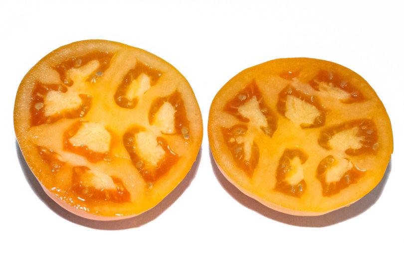 Die orangen Tomaten sind schön saftig und lecker