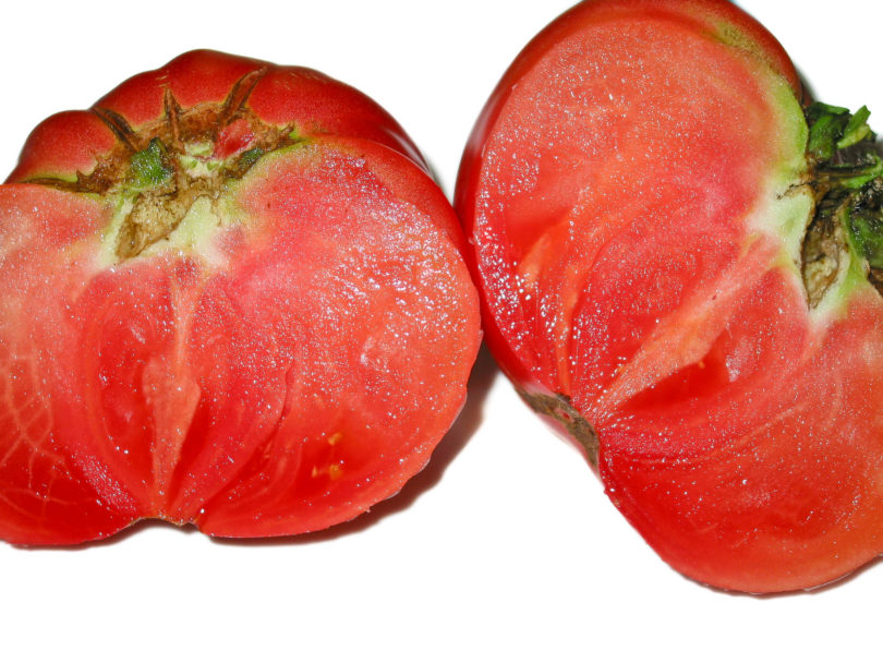 Die Tomatensorte Marlowe Charleston schmeckt sehr gut und aromatisch.