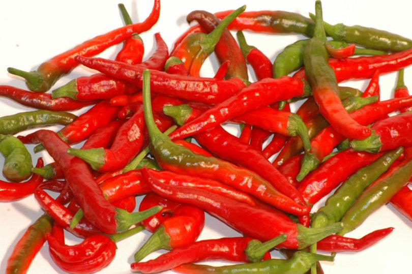 Nagayatsubusa ist eine ertragreiche Chilisorte aus Japan, die sich gut zum Trocknen eignet