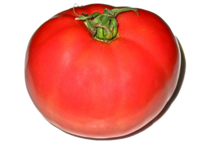 Die Früchte von Pinkshipper sind rund, rot und lecker