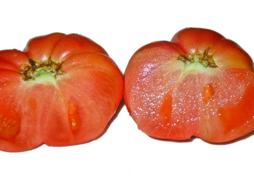 Die leckeren Früchte sind saftig und würzig