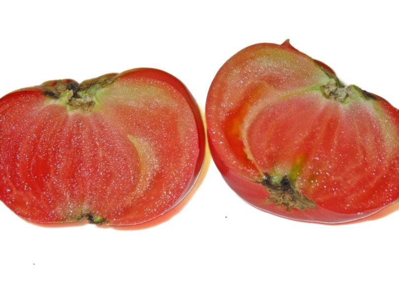 Die Früchte von Purple Smudge sind mittelgroß und manchmal mehrfarbbig gefleckt.