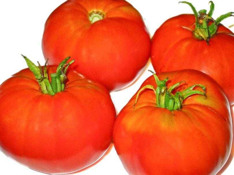 Die Früchte von Purpurkönig sind mittelgroß und sehr schmackhaft.