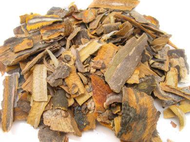 Cascara Sagrado - Rhamnus purshiana - Rhamnaceae